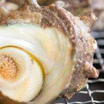 バーベキュー(BBQ)は牛豚肉だけじゃない!普段味わえない調理で差をつけよう