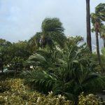 9月に入ると台風シーズンに突入!被害にあわない対策とグッズの紹介!