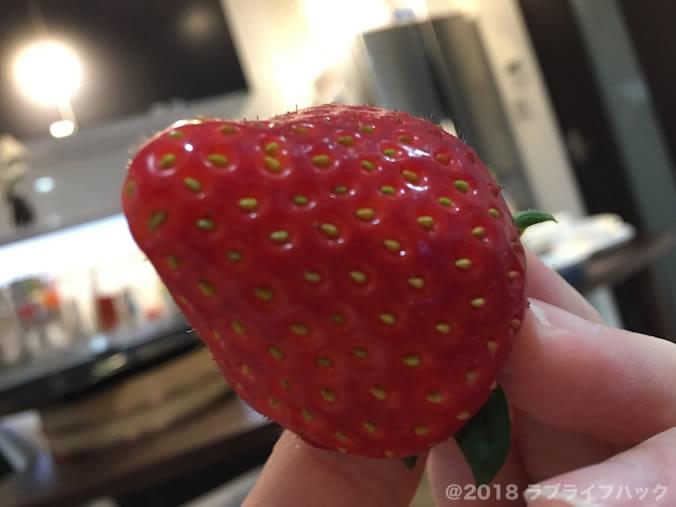 順子の苺園