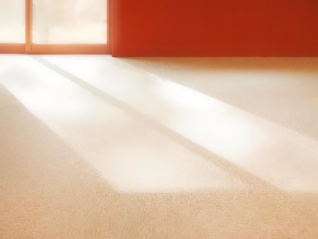 部屋に日光